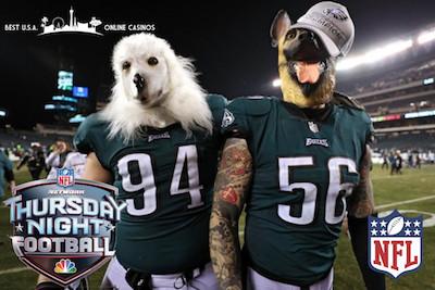 Philadelphia Eagles Dog Masks TNF