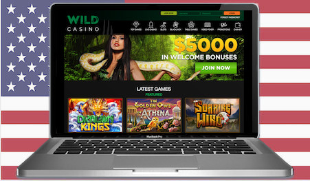Wild Casino Main Image USA