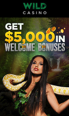 Wild Casino Welcome Bonus