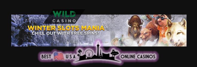 Wild USA Casino Winter Slots Mania